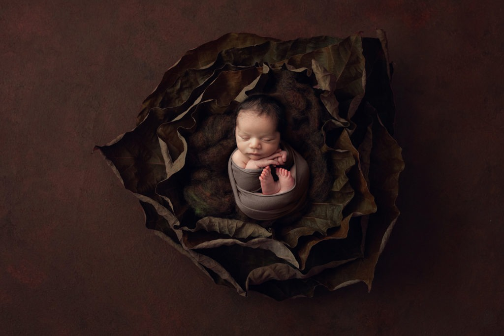 baby wrapped in brown leaf set up